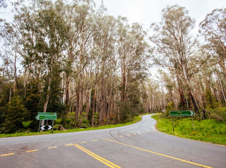 Lake Mountain Resort in Australia